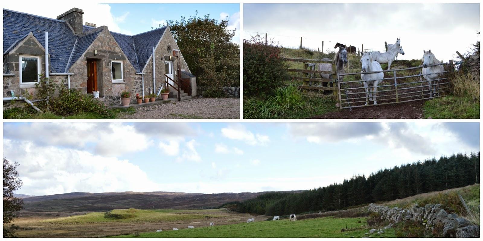 Ballivicar Farms, Isle of Islay, Scotland