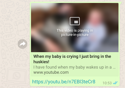 WhatsApp Beta 2.18.301 APK Update : Added New picture-in-picture video Playback Feature
