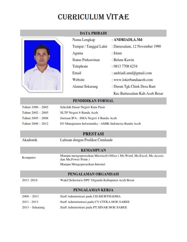 Contoh Resume Cv Terbaik Lengkap Dan Terkini Lalod