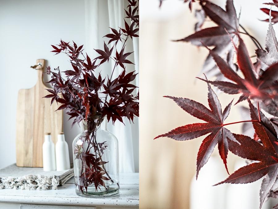 Blog + Fotografie by it's me! | fim.works | Japanischer roter Ahorn in der Vase, nicht am Baum | Collage von Ahorn und Ahorn in einer Glasvase