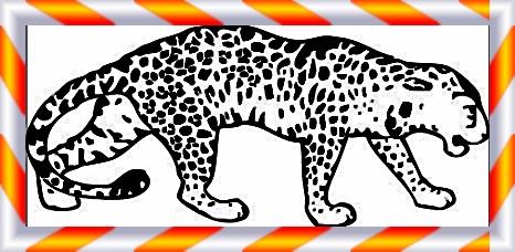 Tiere Ausmalbilder Leopard Gepard Zum Ausdrucken Sims 4 Cc Mod