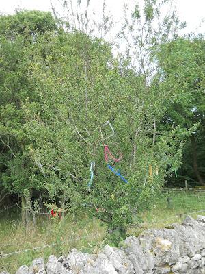 clootie tree bells knap