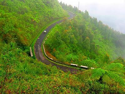 Jalan Menuju Puncak Gunung Telomoyo