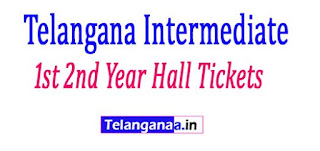 TS Inter (Vocational) 1st 2nd Year Hall Tickets 2017