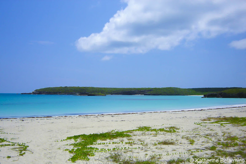 Beach on Vieques Island Romantic Getaway to Puerto Rico for Couples