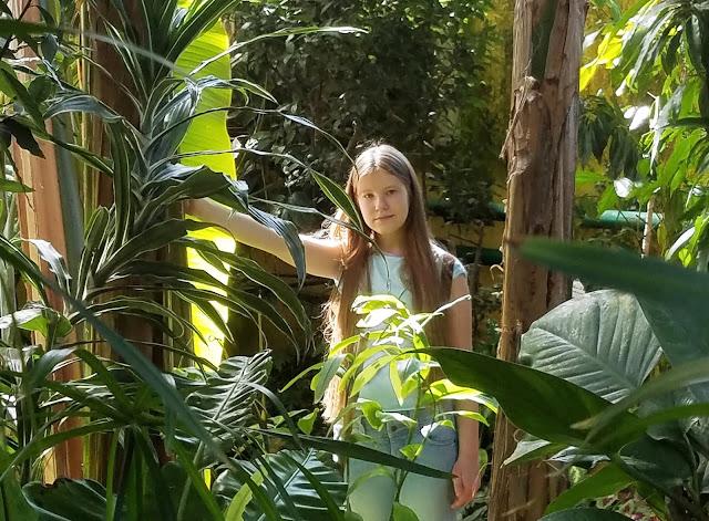 Самарский детский эколого-биологический центр: оранжерея