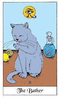 Russian Blue grooming. Drawing by David Borden as part of the White Cat Oracle Deck.