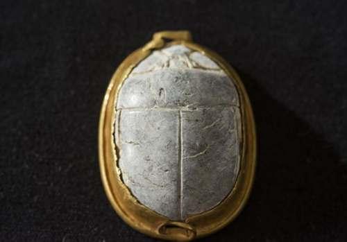 Dorso del sello-escarabeo descubierto recientemente en Tel Dor, Israel.