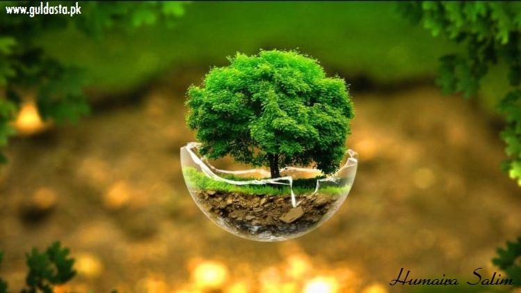 Essay on tree plantation - वृक्षारोपण पर निबंध
