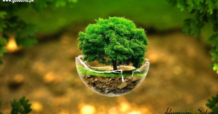 tree plantation green short english essay guldasta