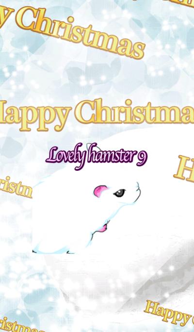 Lovely hamster9
