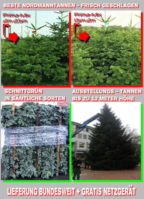 Tannenbaum Netzgerät.Weihnachtsbaumplantagen Günstige Nordmanntannen Kaufen