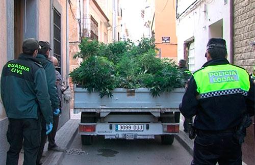 Resultado de imagen de transporte de cannabis
