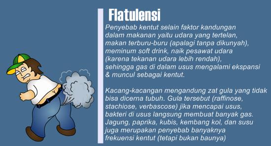 Obat Perut Kembung Dan Gas (Kentut)