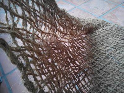 Lướt sơ dừa