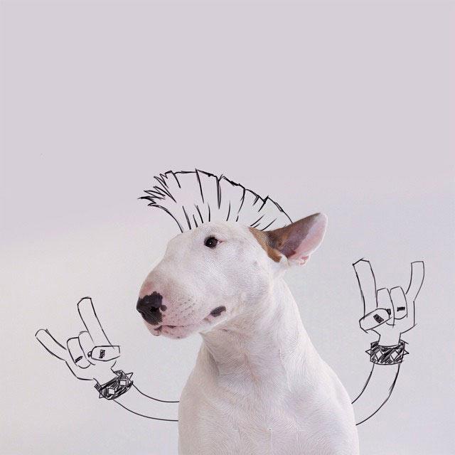 Perro mascota se convierte en descaradas obras de arte empleando intelligent bocetos de su dueño