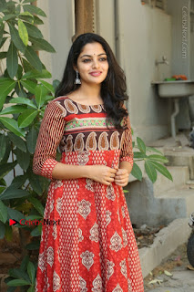 Telugu Actress Nikhila Vimal Latest Stills in Anarkali Dress  0148.JPG