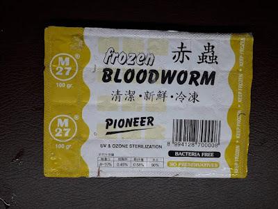 bloodworm icalofish.blogspot.com