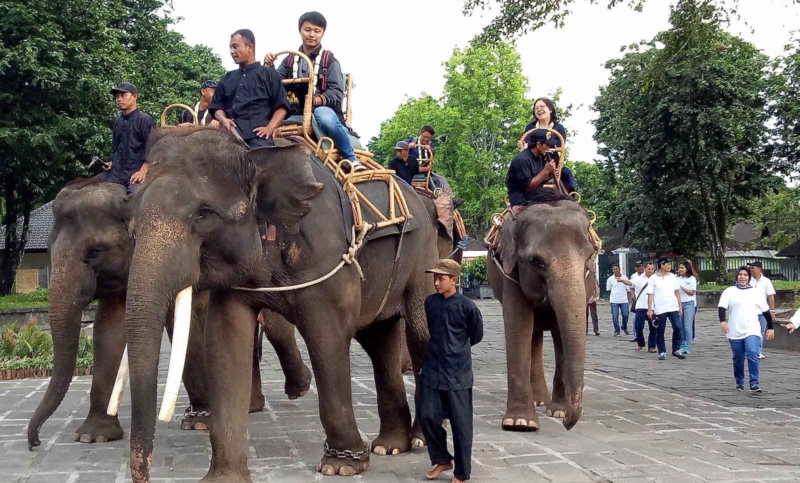 Empat Wisatawan Pengunjung Pertama Candi Borobudur Diarak