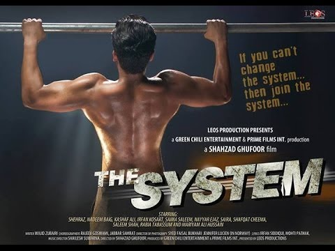 The System 2014 Pakistani Movie DVDRip Download