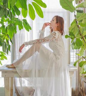 summer chiffon fabric wedding dress gown long lace leeves transparent skirt
