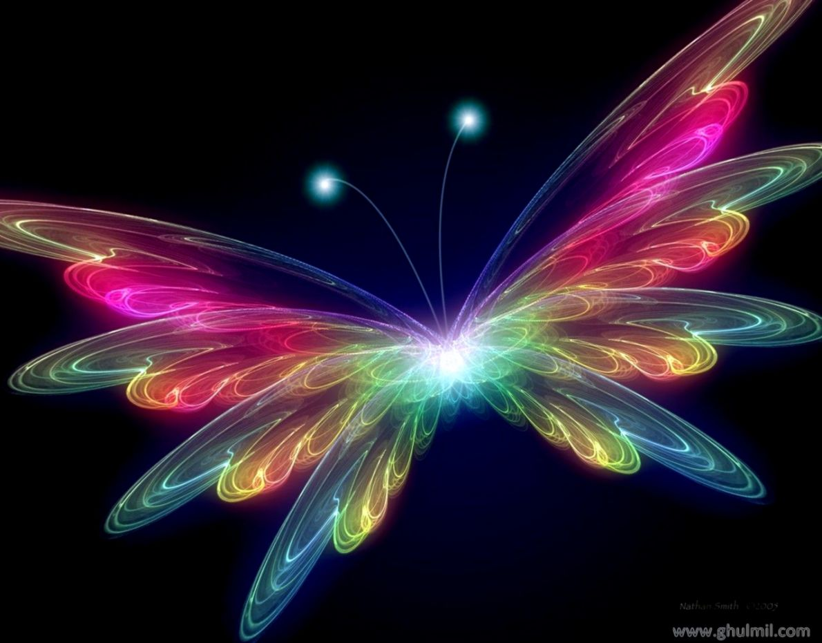 Beautiful Butterfly 3D Wallpapers Background