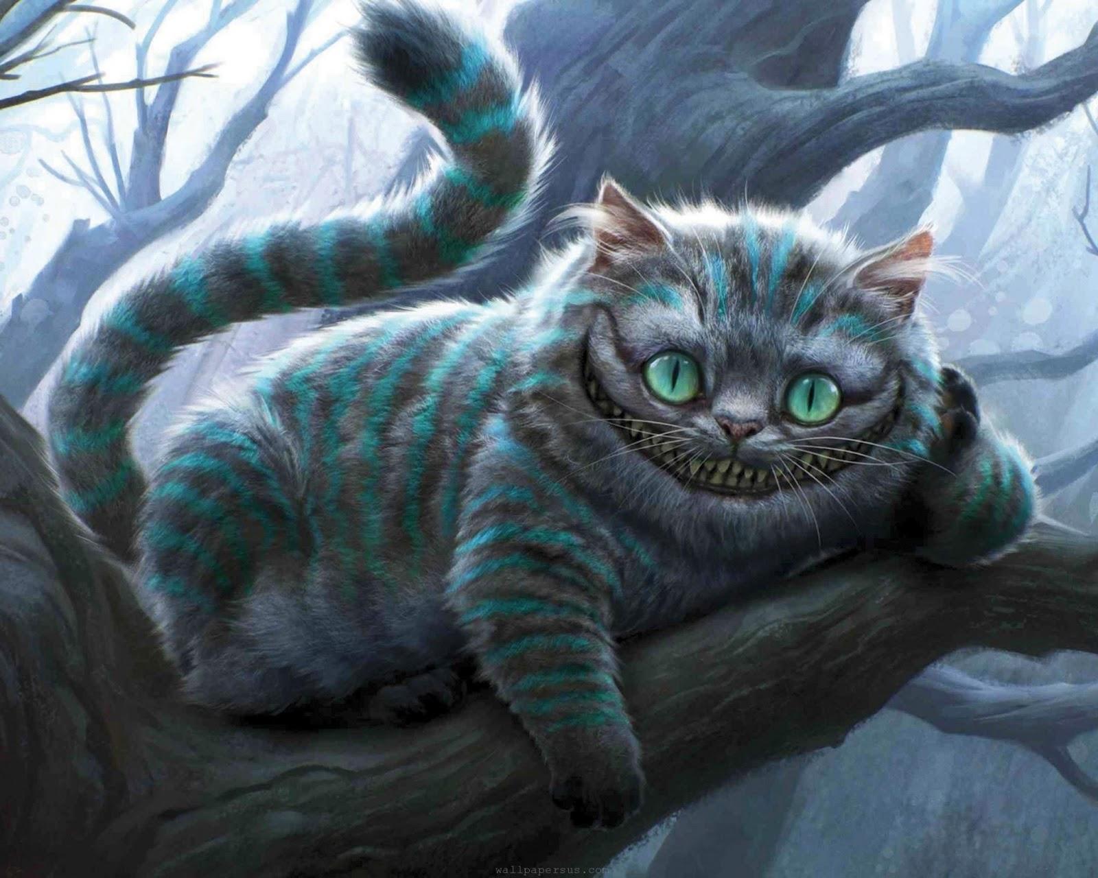 Kucingku Sayang 15 Karakter Kucing Paling Populer