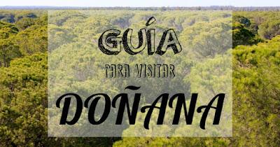 Guía para visitar Doñana