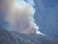 Williams Fire 2012