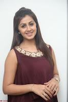 Nikki Galrani in a Brown Shining Sleeveless Gown at Nakshatram music launch ~  Exclusive 068.JPG