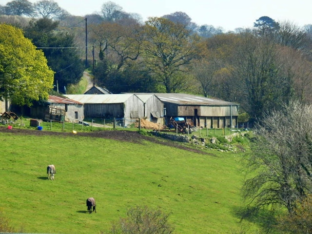 Farm on other side of Gover Valley, St.Austell, Cornwall