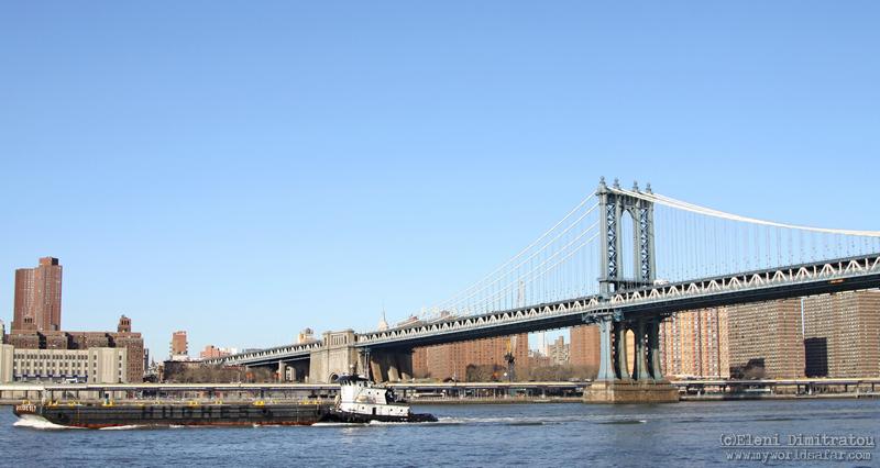 Μαούνα στο ποτάμι της Ν¨εας Υόρκης (c) Ε.Δημητράτου