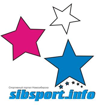 """Спортивный портал Новосибирска """"SibSport.info"""""""