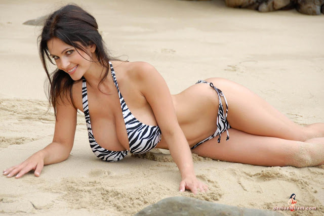 Denise Milani Beach Zebra HD Sexy Photoshoot Hot Photo 9