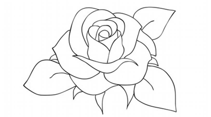 Intisari Teknik Menggambar Flora ~ Ruana Sagita