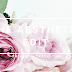 Welcome to The Aesthetic Edit!