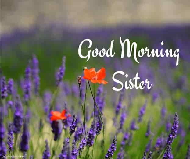 goodmorning sister