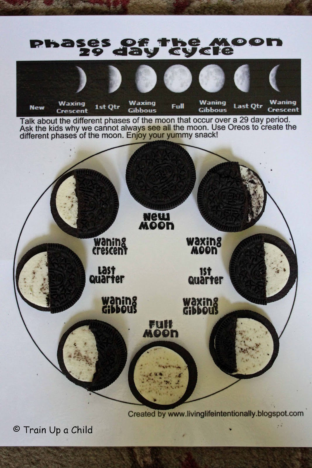 Easy Moon Phases Worksheet