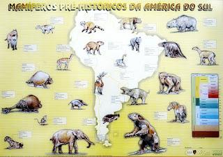 Mamíferos Pré-Históricos da América do Sul - Museu Gama d' Eça, Santa Maria (RS)