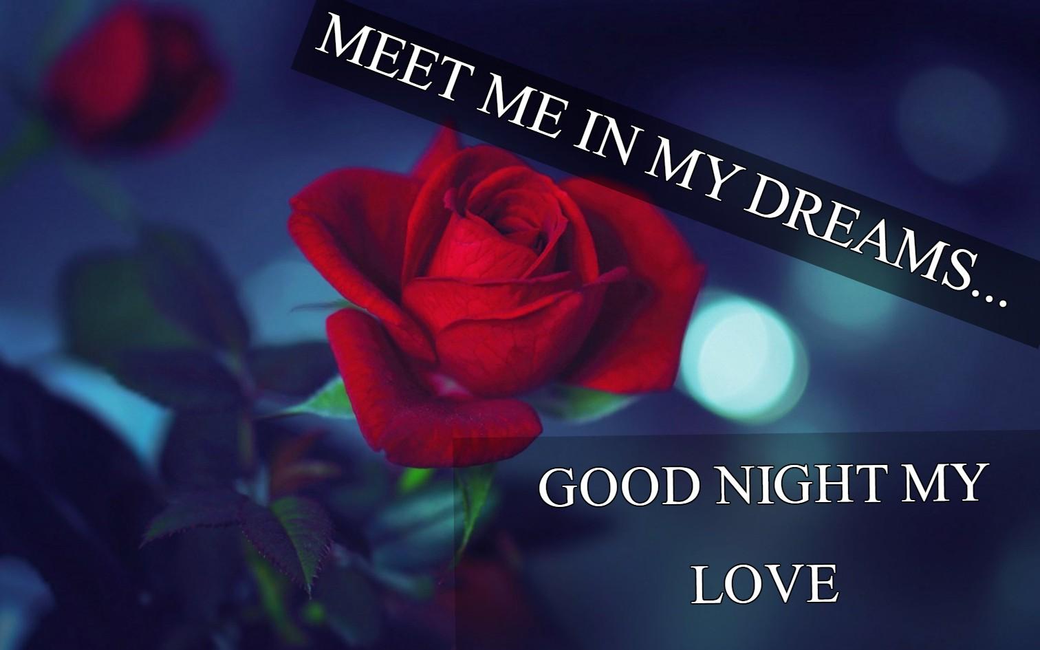 Good night beautiful lovely flowers images kamos hd wallpaper good night images flowers new many hd wallpaper izmirmasajfo