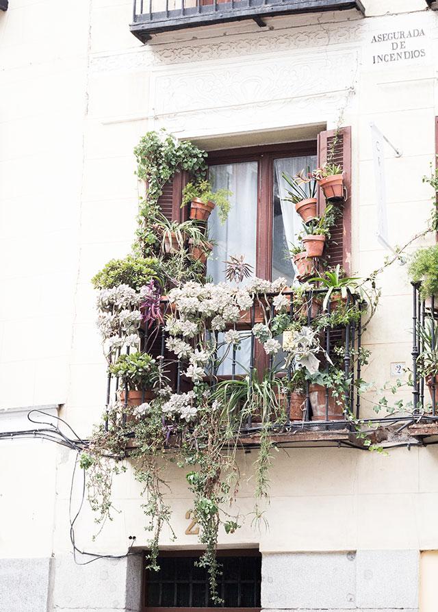 balcón con plantas madrid