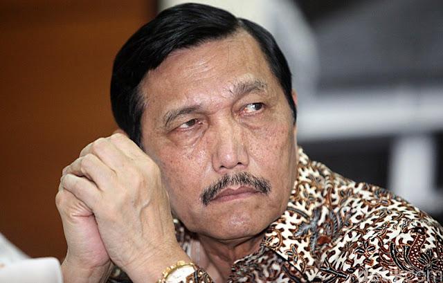 Luhut: Jokowi Tunjukkan Cerita Sukses, yang Lain Baru akan