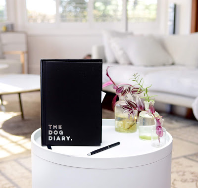Nooshel 2019 Dog Diary with dog quotes and ballpoint pen displayed on coffee table
