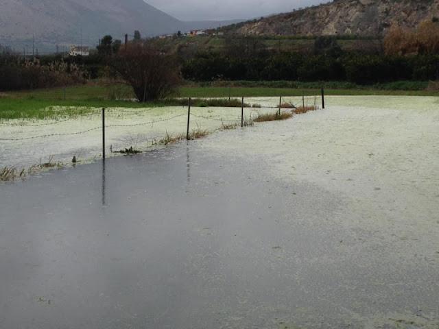 Πλημμυρισμένες εκτάσεις στην περιοχή Παλαιόπυργα του Άργους