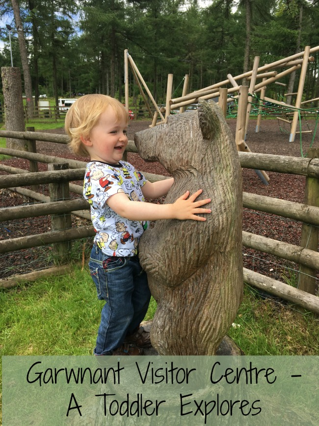 Garwnant-Visitor-Centre-A-Toddler-Explores-text-on-toddler-with-baby-bear