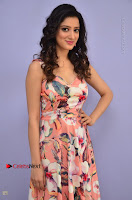 Actress Richa Panai Pos in Sleeveless Floral Long Dress at Rakshaka Batudu Movie Pre Release Function  0035.JPG