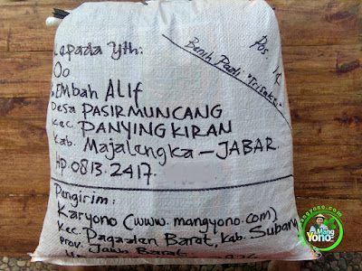 Benih pesana Oo Majalengka, Jabar.  (Sesudah Packing)
