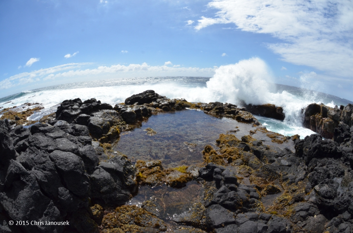 A Wave Pounding The Southern Coast At Kae Lae Padina And Other Seaweeds Carpeted This Great Tidepool