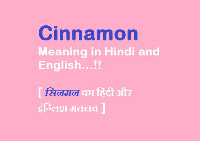 Cinnamon Meaning in Hindi and English