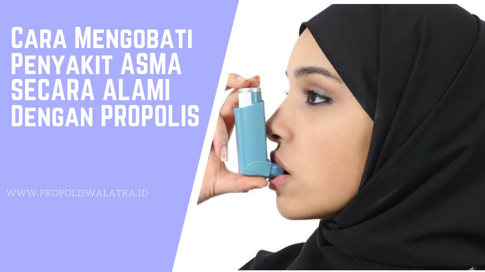 Cara Mengobati Penyakit Asma Dengan Propolis
